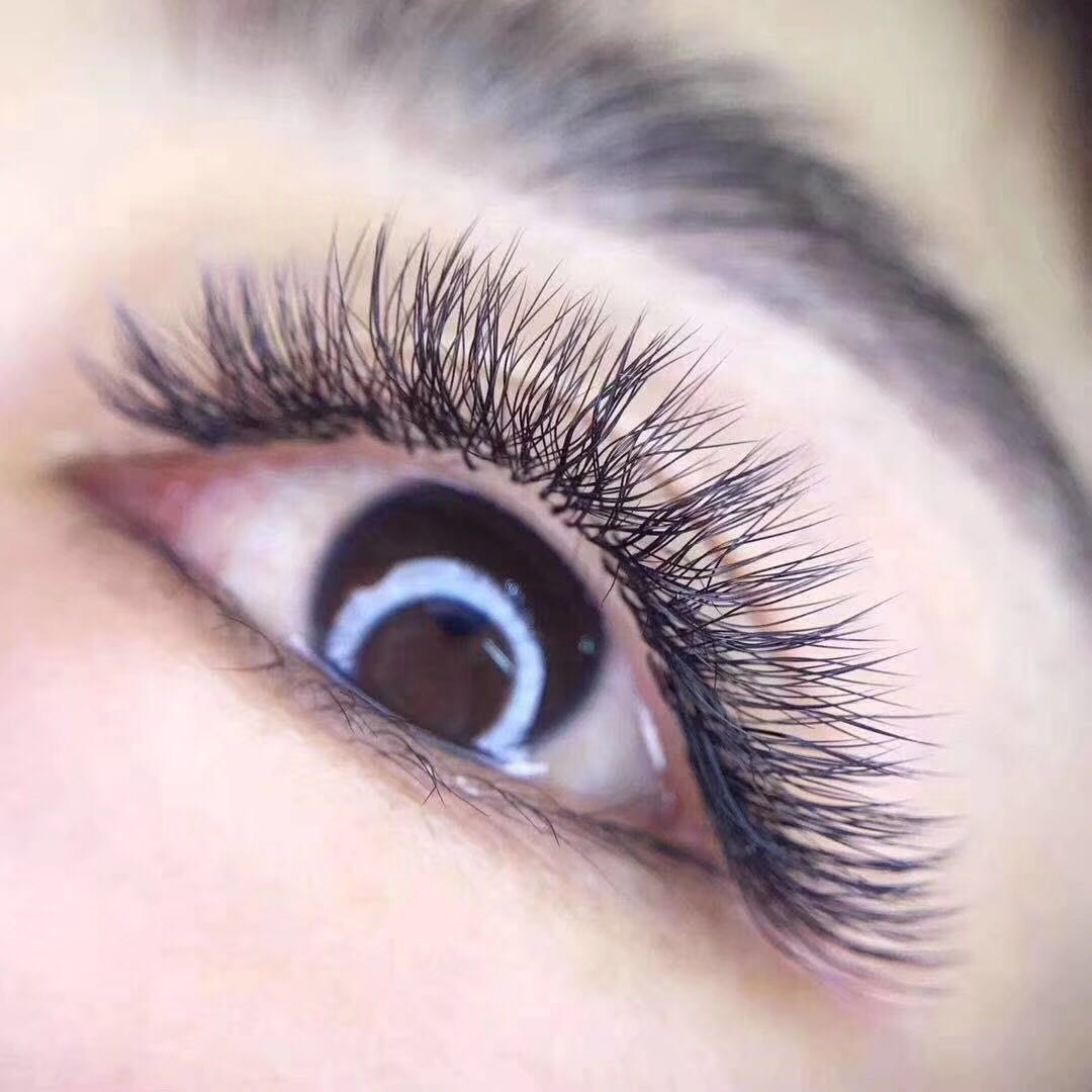 Wholesale Y Shape Weave Blooming Volume Eyelash Extension YY Eyelashes Extension ZX04