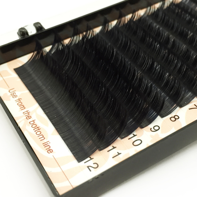 Free Sample for Korea PBT Fiber Russian Volume Eyelash Extension UK USA YY62