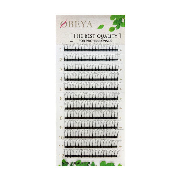 2D 3D 4D 5D 6DIndividual Premade Pre Made Fan Volume Eyelash Extension With 0.07 mm  xx